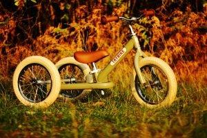 Review: Trybike 2-in-1 loopfiets