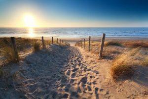 Lees meer over het artikel Roompot Vakantiepark Kijkduin